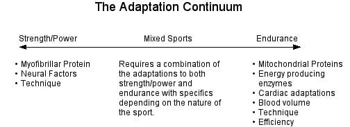 The Adaptation Continuum