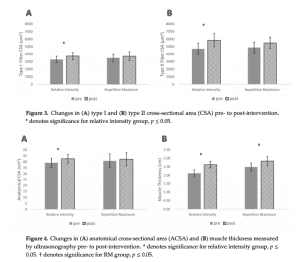 Muscle Fiber Adaptations to RM or Varied Intensity Training
